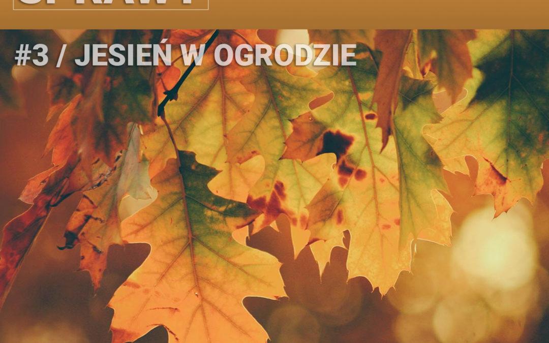 03 – Jesień w ogrodzie